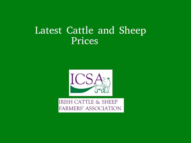 Latest Cattle & Sheep Prices - ICSA