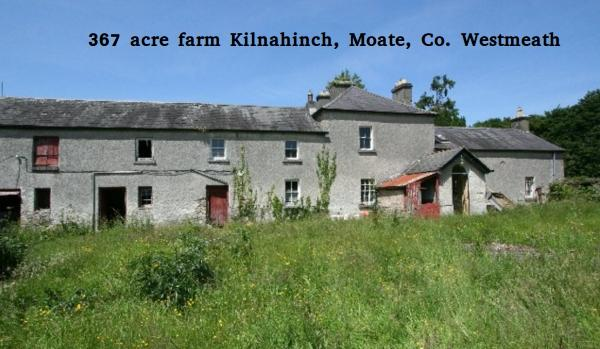 367 acre farm for sale in Westmeath