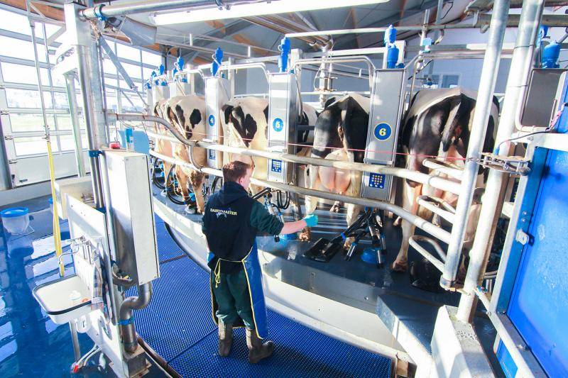 Dairymaster Launch Six New Rotary Parlours @ Ploughing 18