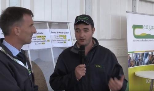Winter Fodder Advise - Teagasc