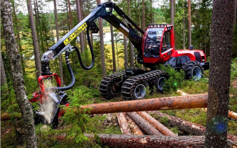 Better Times Ahead For Forestry & Timber Processing