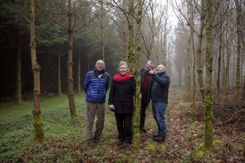 Award Winning Family Farm Forests in Cavan