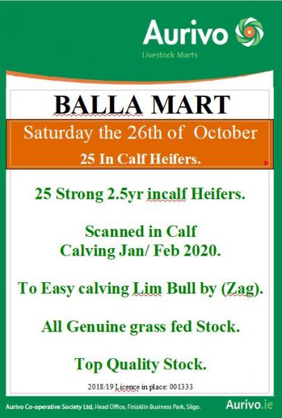 Special Sale of In calf heifers at Balla