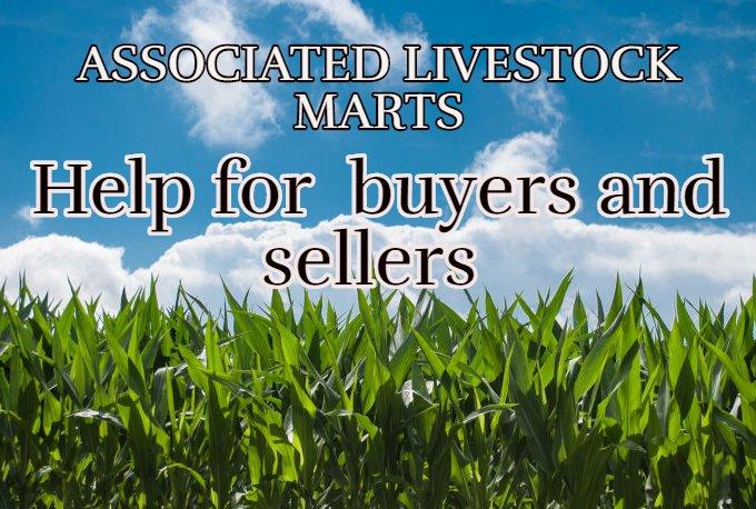 Marts to  help  Buyers and Sellers